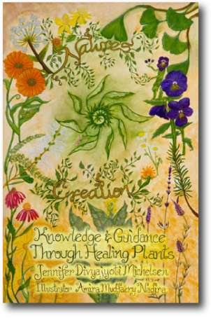 Knowledge and Guidance through Healing-Plants
