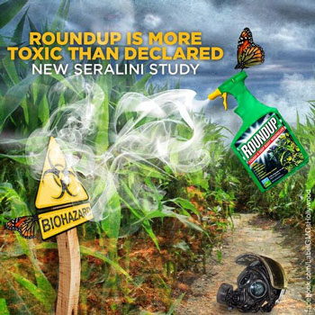 systemic pesticides health risks